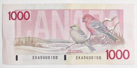 Peter Andrew Lusztyk, Thousand Dollar Bill (Canada)