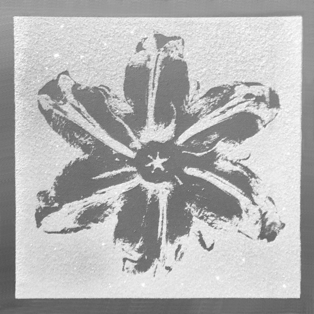 Rubem Robierb, Power Flower Silver on White