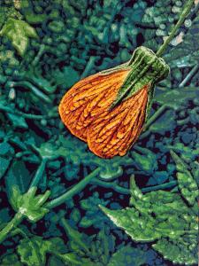 Logan Hicks, Monet Flower Closeup - Flower 6